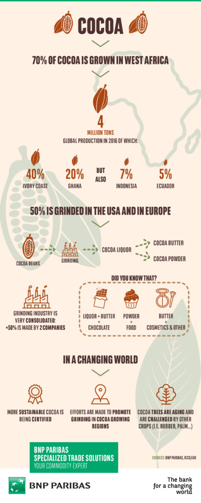 BNP Paribas_STS_Infographic_Cocoa