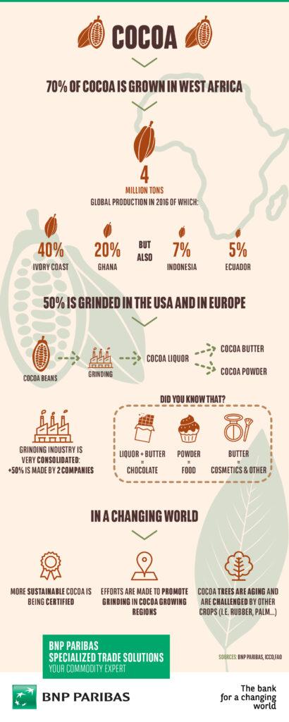 BNP Paribas_STS_Infographic_Cocoa