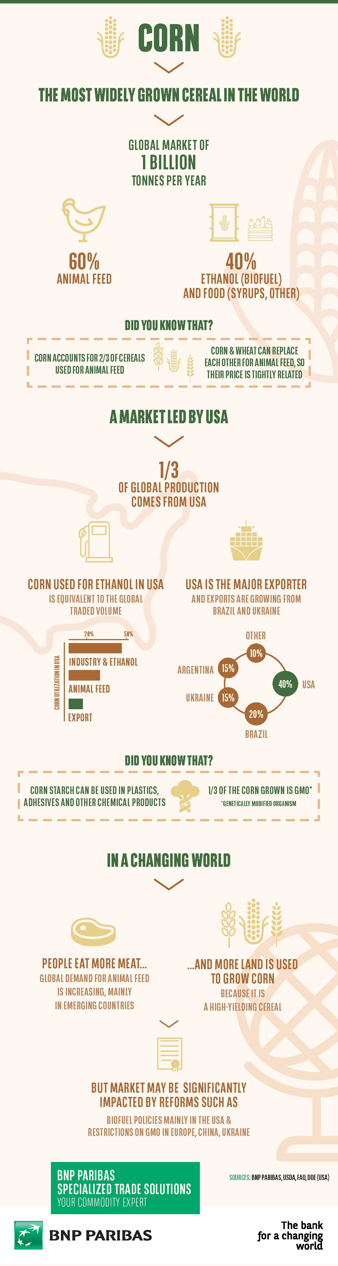 Infographie sur le maïs